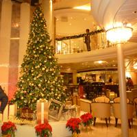 飛鳥のクリスマスツリー